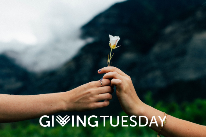 Giving Tuesday, December 1st